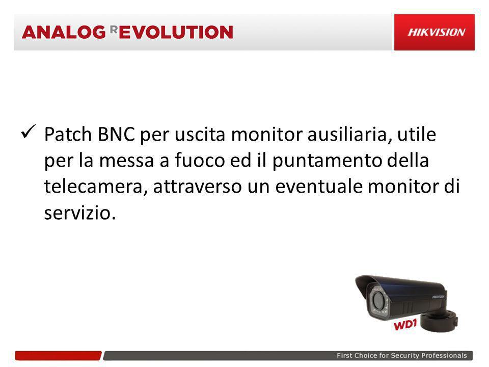 Patch BNC per uscita monitor ausiliaria, utile per la messa a fuoco ed il puntamento della telecamera, attraverso un eventuale monitor di servizio.
