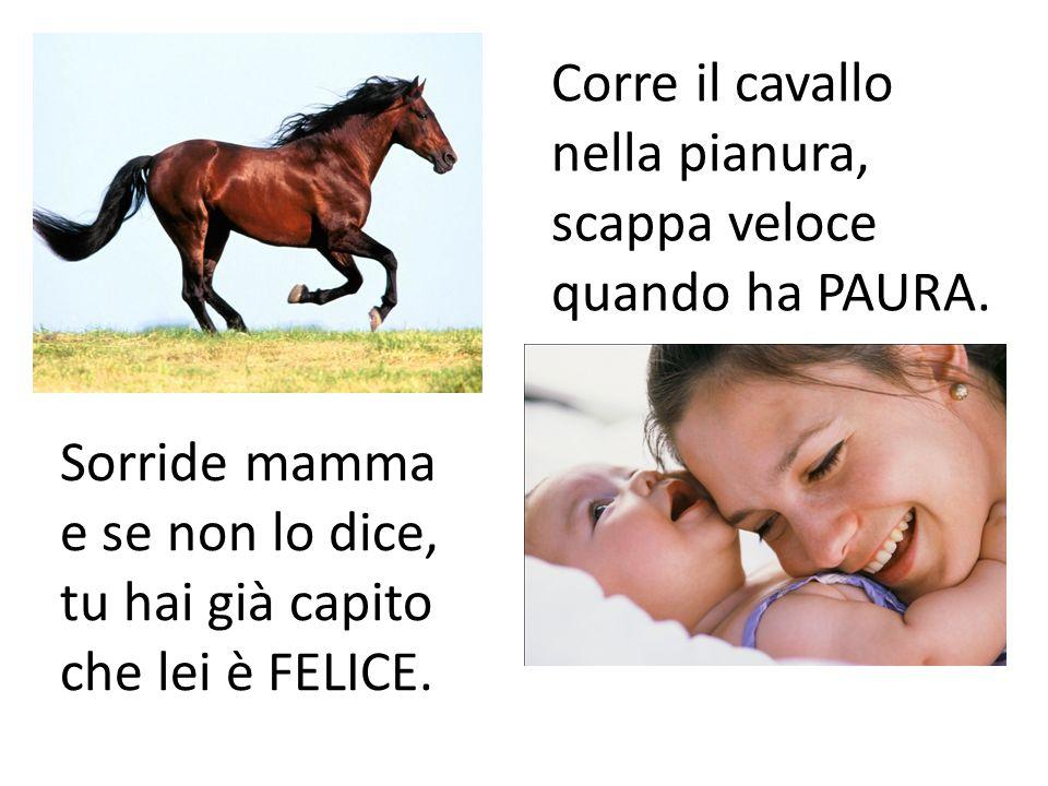 Corre il cavallo nella pianura,