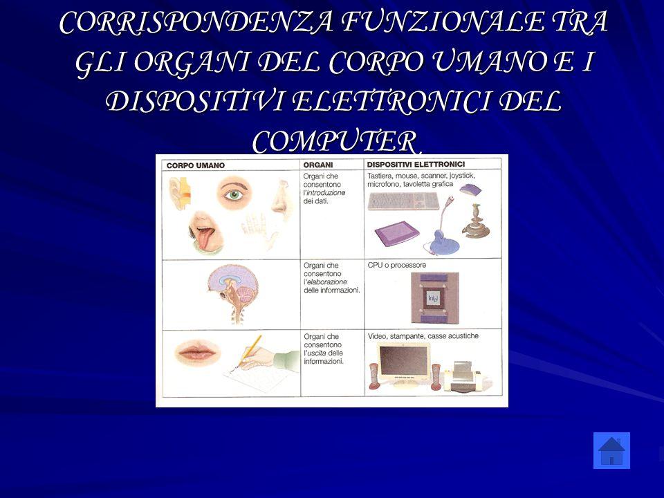 CORRISPONDENZA FUNZIONALE TRA GLI ORGANI DEL CORPO UMANO E I DISPOSITIVI ELETTRONICI DEL COMPUTER