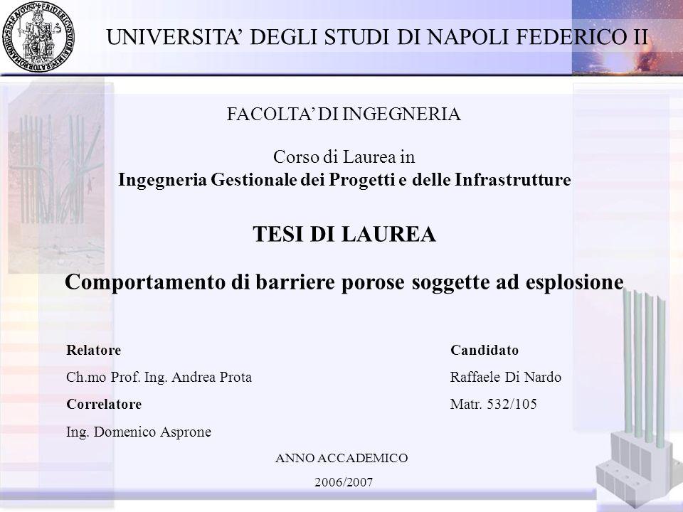 UNIVERSITA' DEGLI STUDI DI NAPOLI FEDERICO II