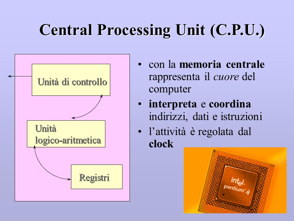 Central Processing Unit (C.P.U.)
