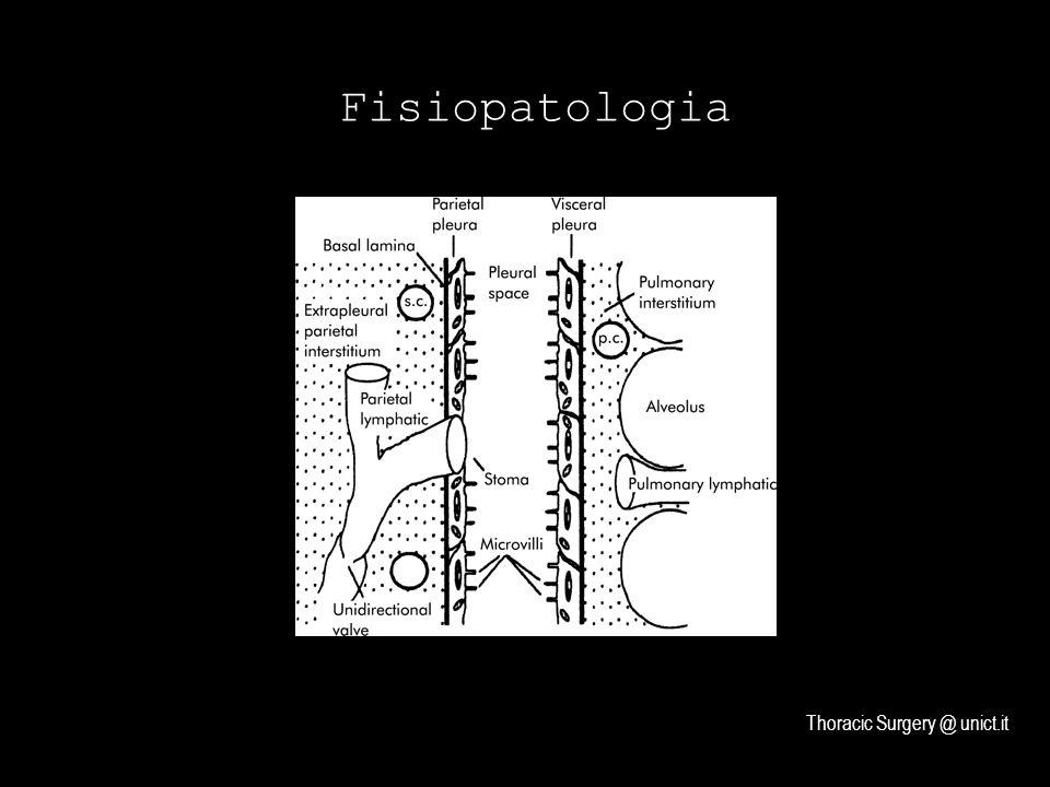 Fisiopatologia Thoracic Surgery @ unict.it