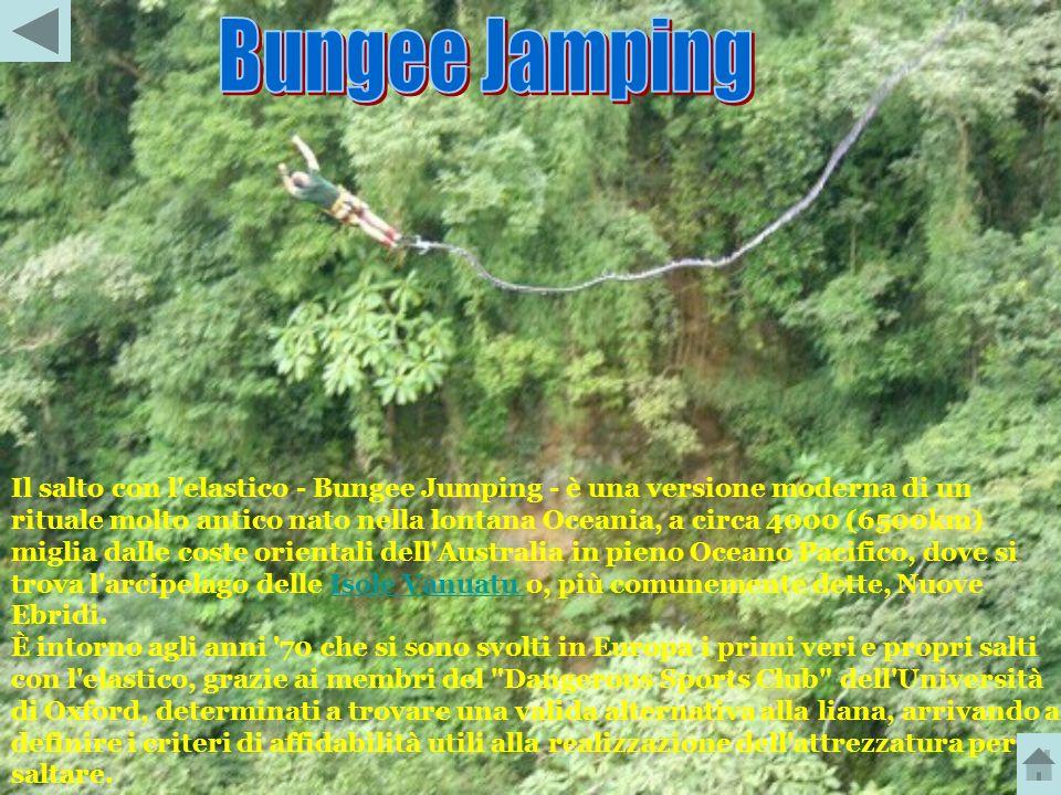 Bungee Jamping