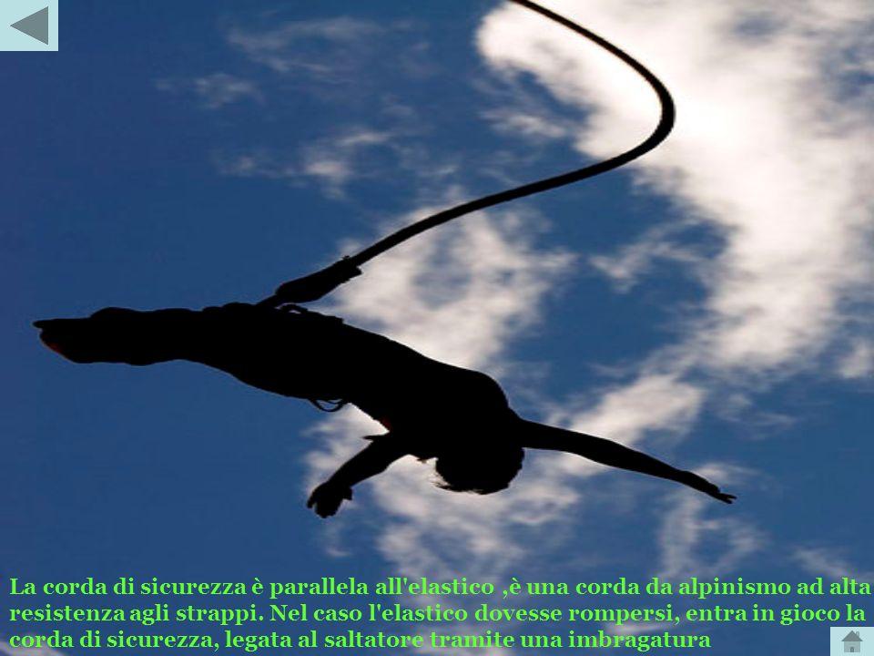 La corda di sicurezza è parallela all elastico ,è una corda da alpinismo ad alta resistenza agli strappi.