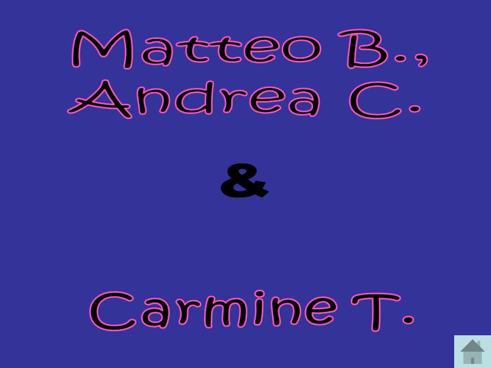 Matteo B., Andrea C. & Carmine T.