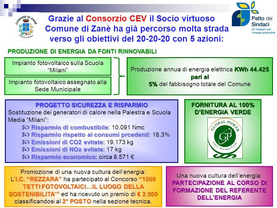 PROGETTO SICUREZZA E RISPARMIO FORNITURA AL 100% D'ENERGIA VERDE