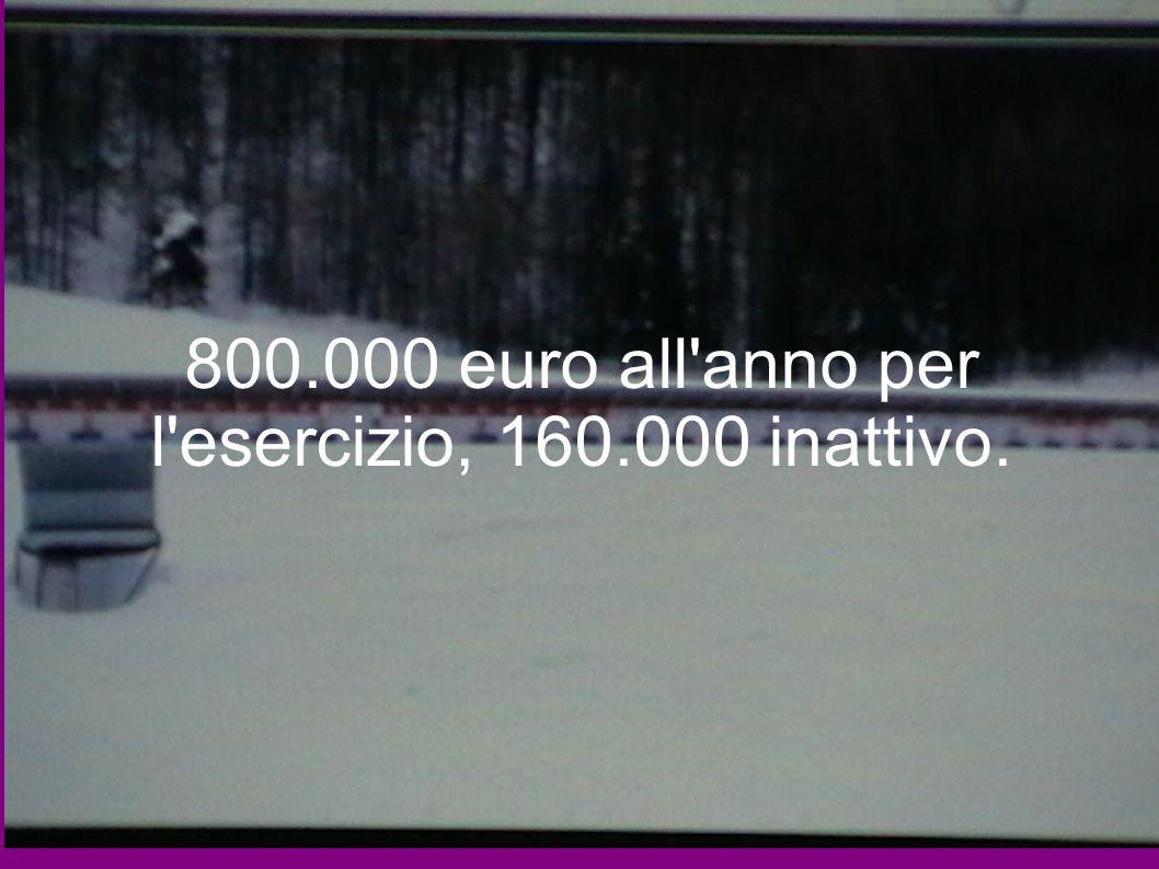 800.000 euro all anno per l esercizio, 160.000 inattivo.