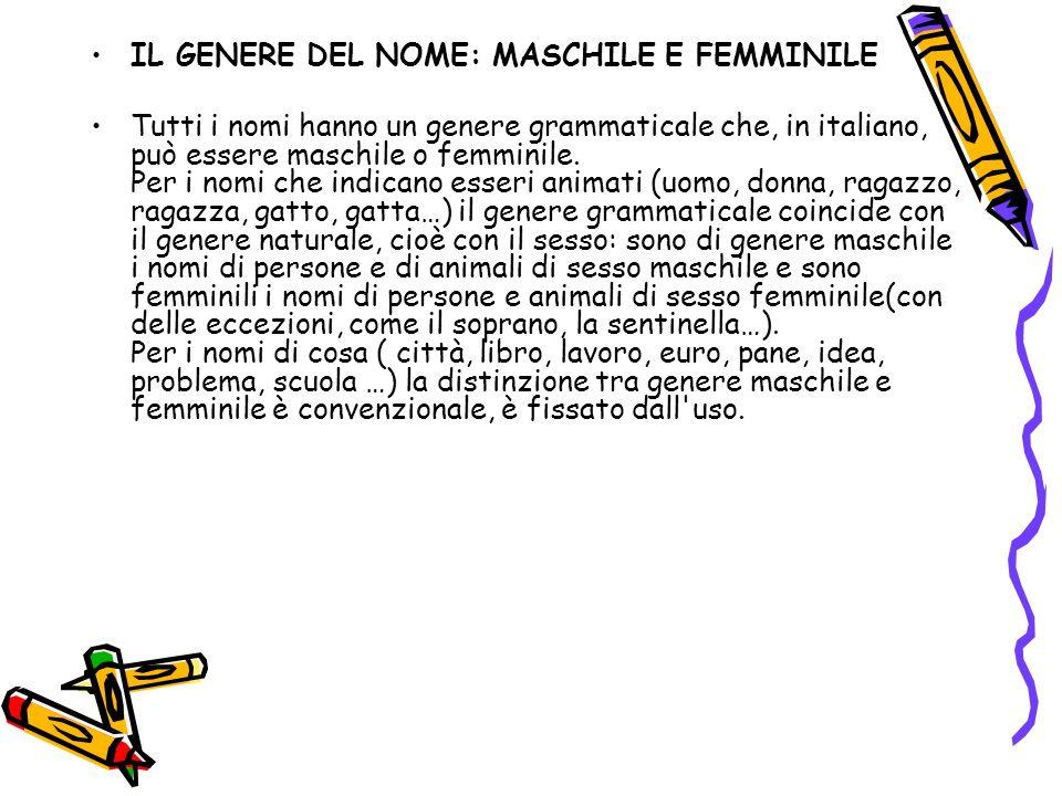 IL GENERE DEL NOME: MASCHILE E FEMMINILE