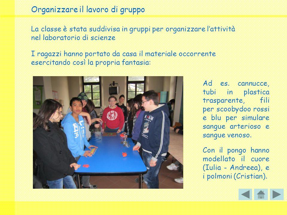 Organizzare il lavoro di gruppo