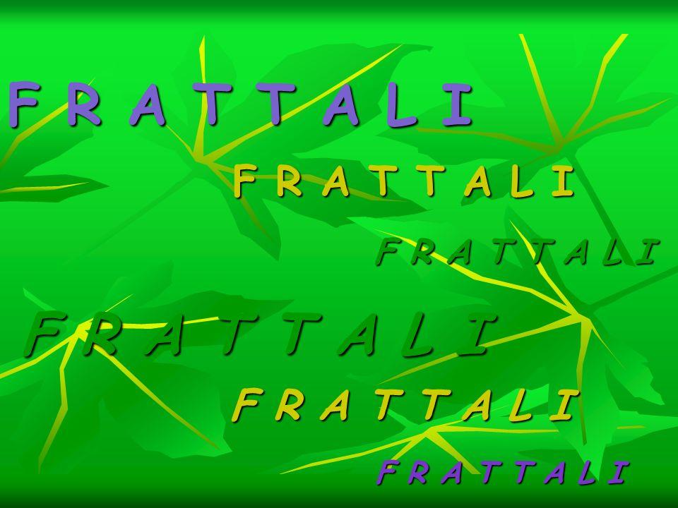 F R A T T A L I F R A T T A L I F R A T T A L I F R A T T A L I