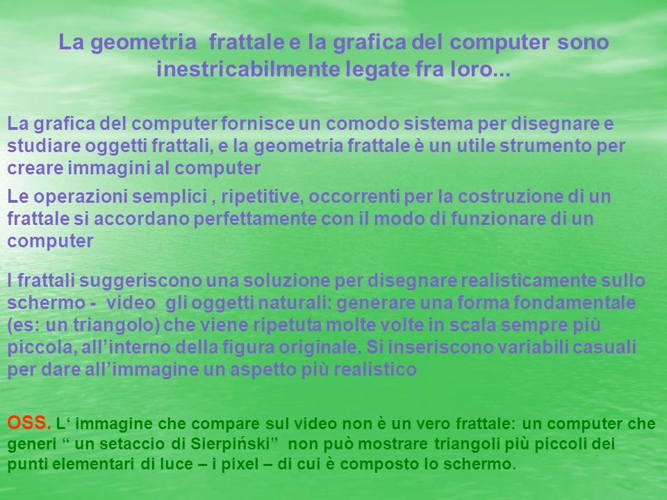 La geometria frattale e la grafica del computer sono inestricabilmente legate fra loro...