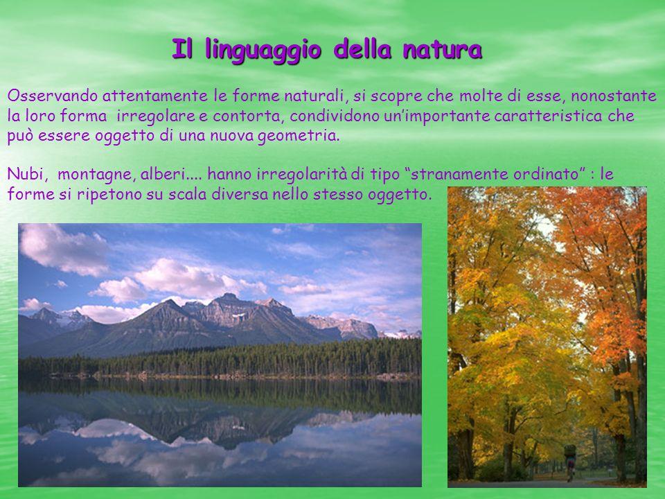 Il linguaggio della natura