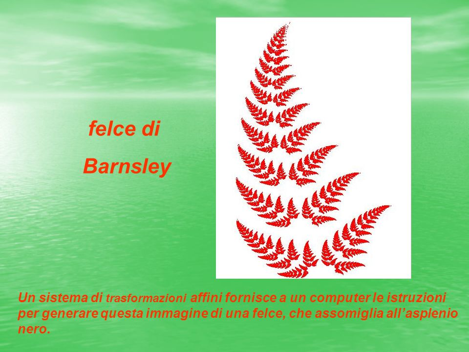 felce di Barnsley.