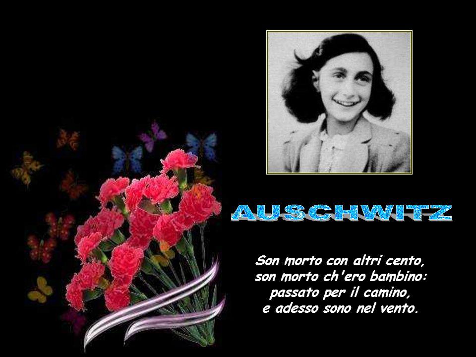 Anna Frank AUSCHWITZ.