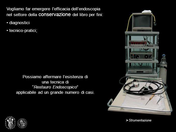 Vogliamo far emergere l'efficacia dell'endoscopia nel settore della conservazione del libro per fini:
