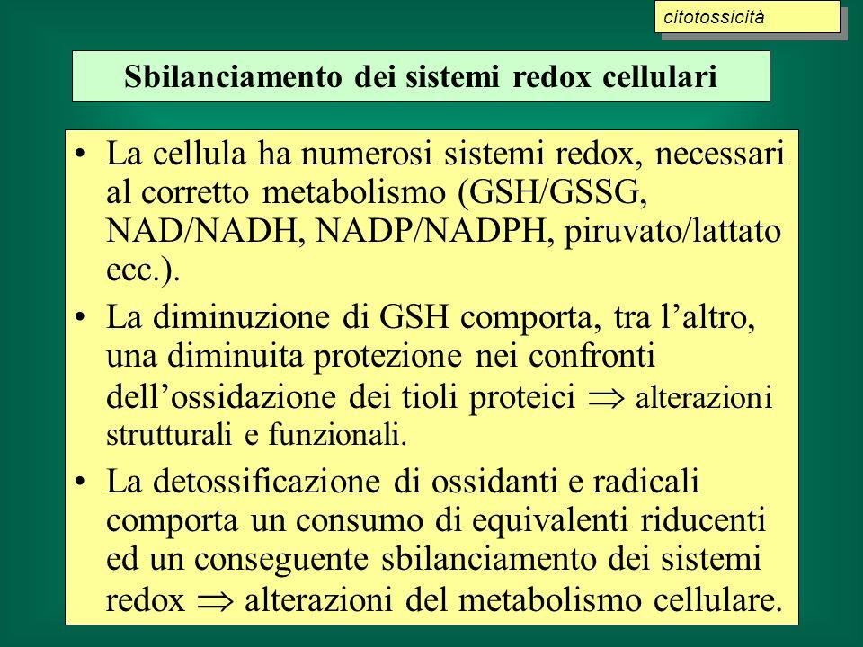 Sbilanciamento dei sistemi redox cellulari