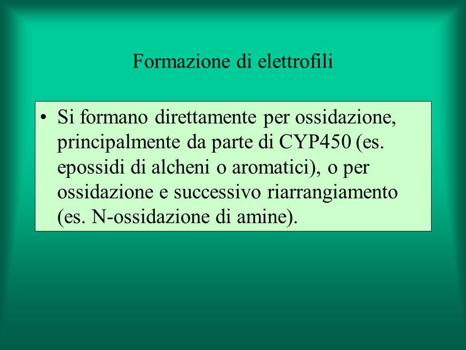 Formazione di elettrofili
