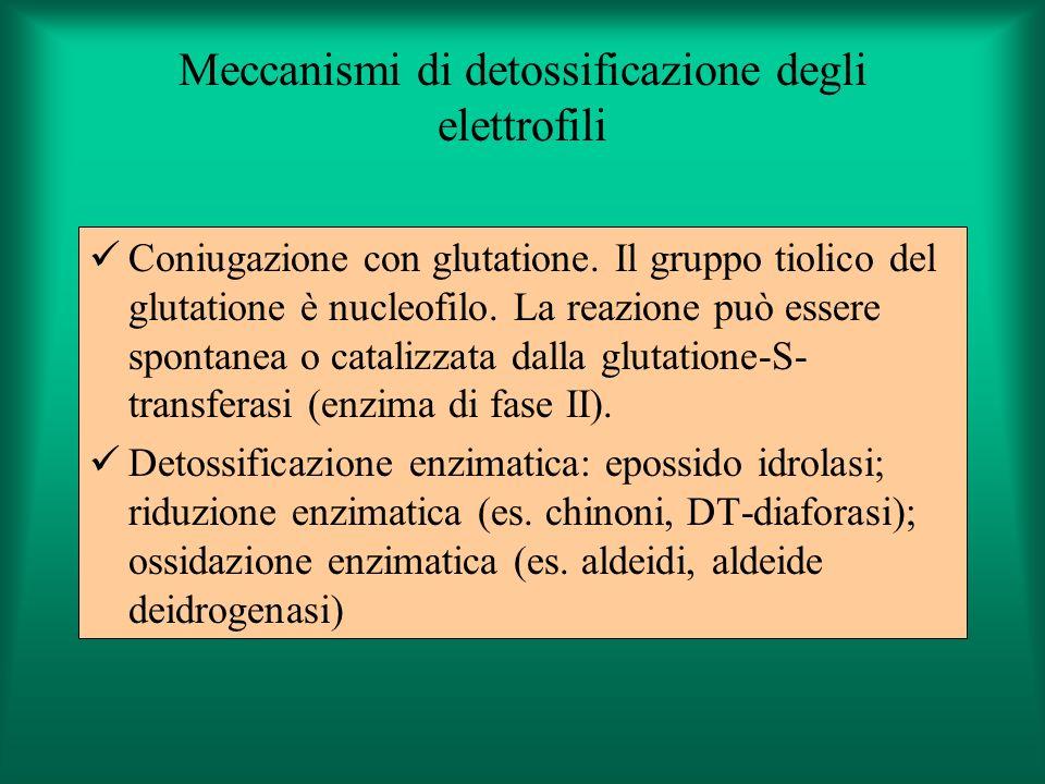 Meccanismi di detossificazione degli elettrofili