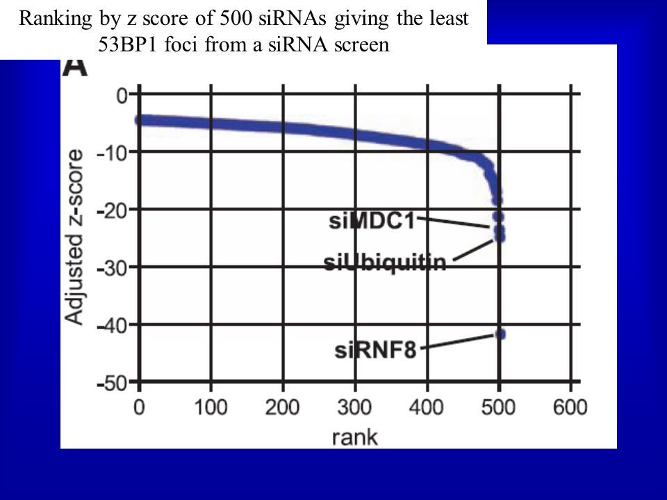 Ranking by z score of 500 siRNAs giving the least