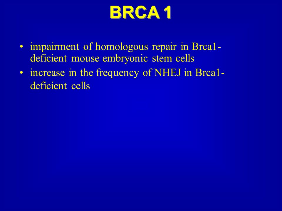 BRCA 1impairment of homologous repair in Brca1-deficient mouse embryonic stem cells.