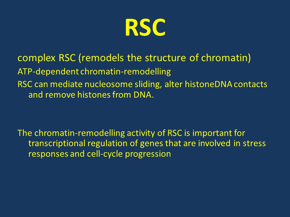 RSC complex RSC (remodels the structure of chromatin)