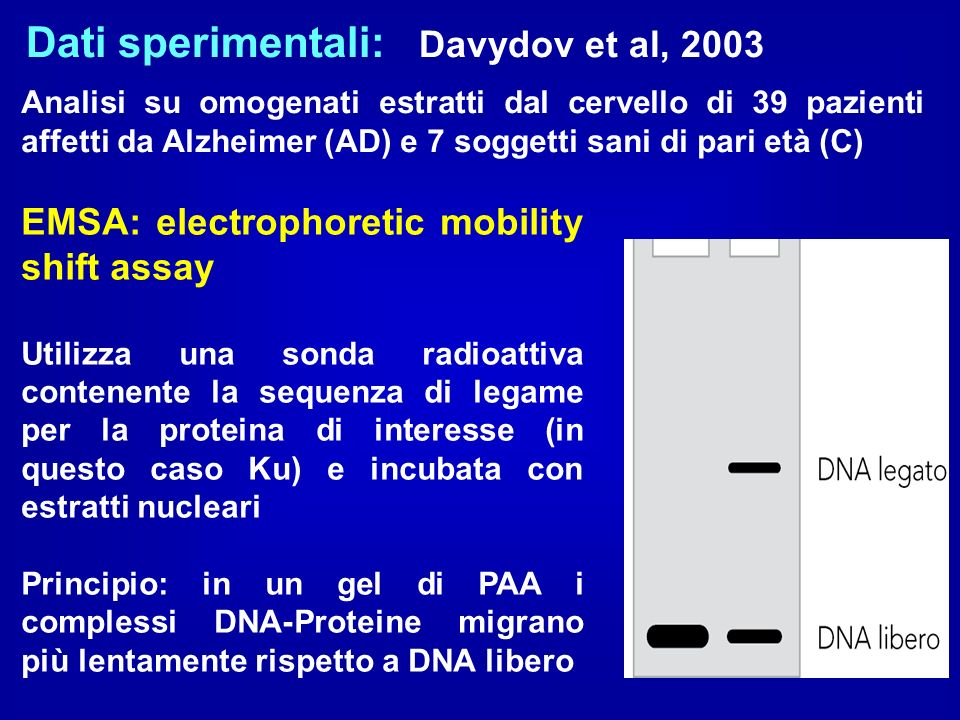Dati sperimentali: Davydov et al, 2003