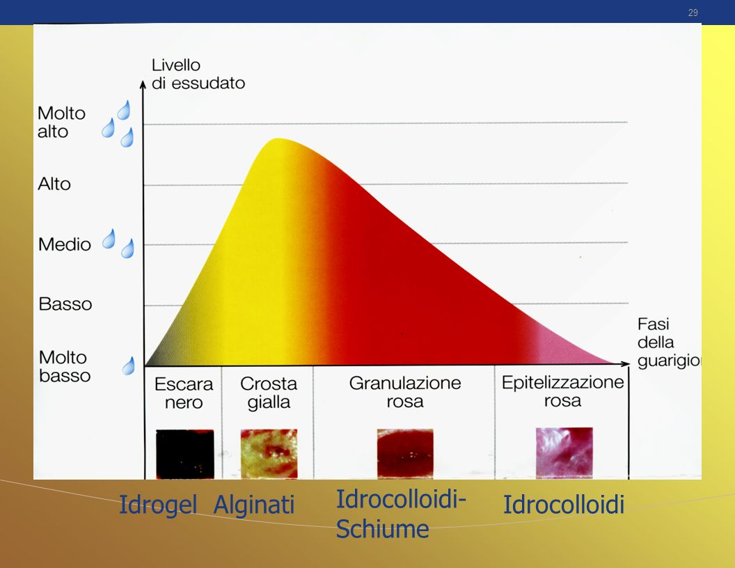 Idrocolloidi-Schiume