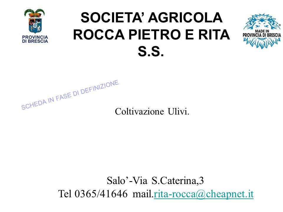 SOCIETA' AGRICOLA ROCCA PIETRO E RITA S.S.