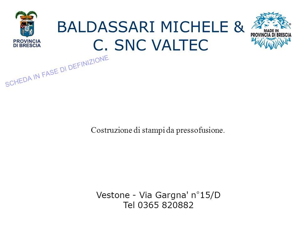 BALDASSARI MICHELE & C. SNC VALTEC
