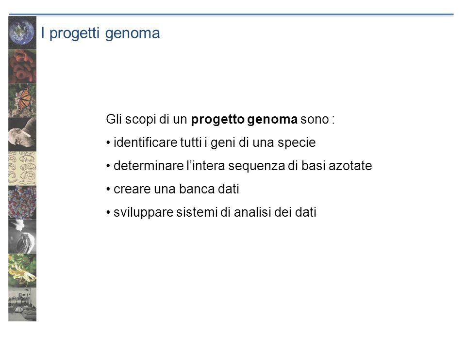 I progetti genoma Gli scopi di un progetto genoma sono :