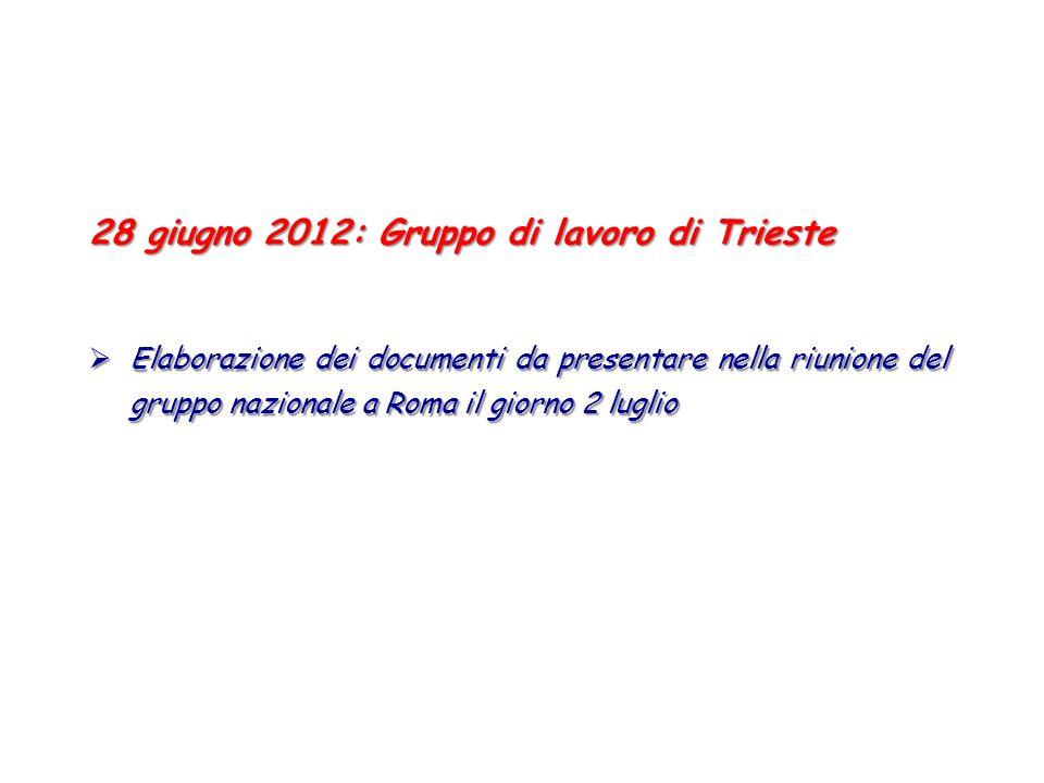 28 giugno 2012: Gruppo di lavoro di Trieste