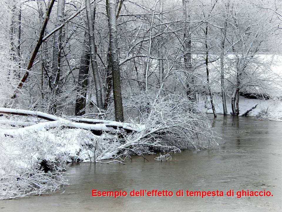 Esempio dell'effetto di tempesta di ghiaccio.