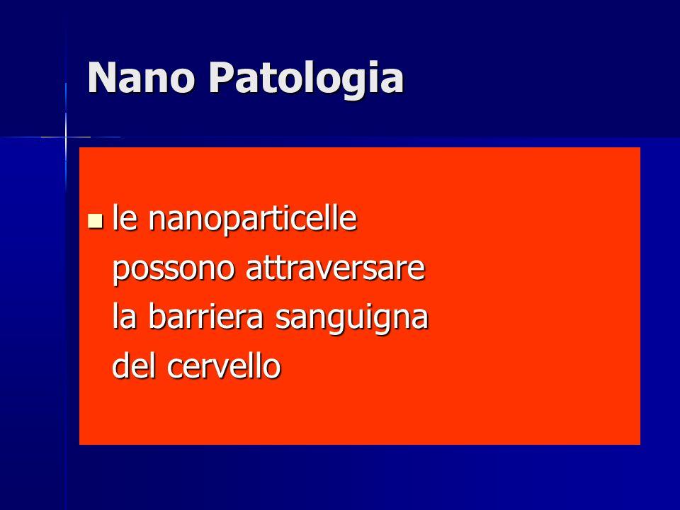 Nano Patologia le nanoparticelle possono attraversare