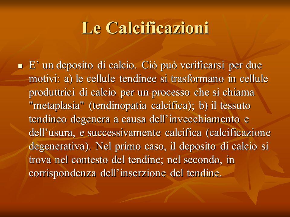 Le Calcificazioni