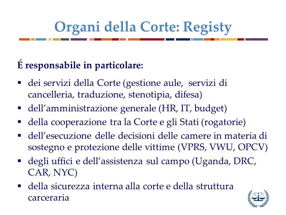 Organi della Corte: Registy