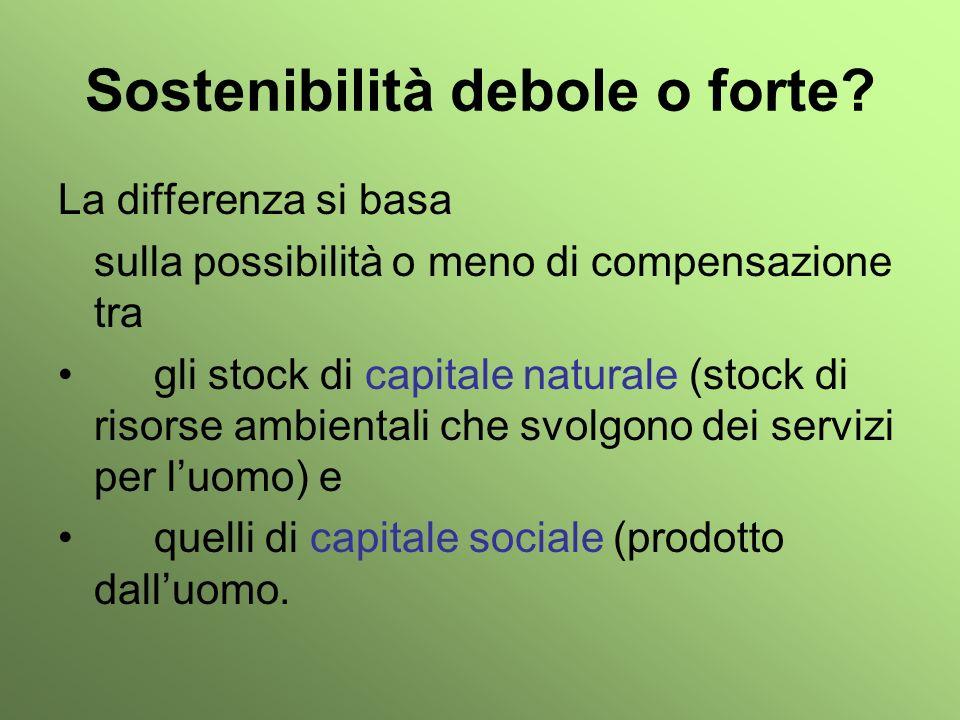 Sostenibilità debole o forte