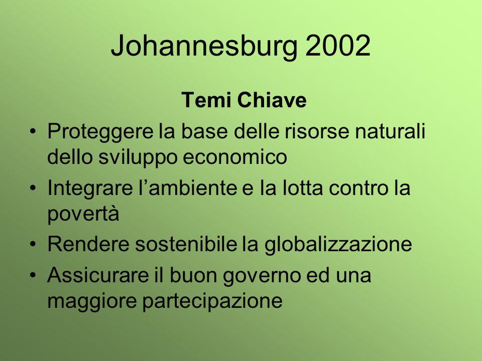 Johannesburg 2002 Temi Chiave