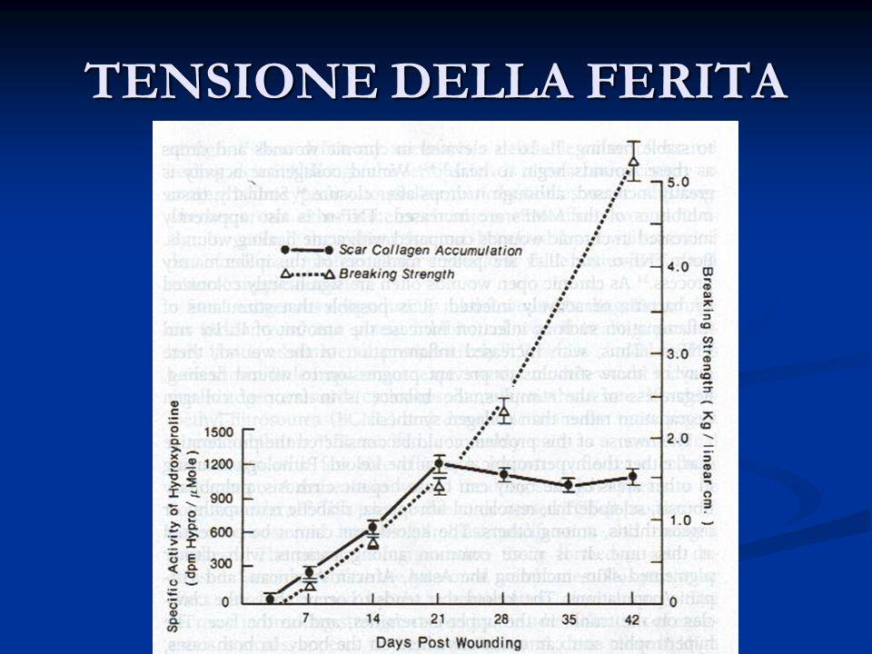 TENSIONE DELLA FERITA