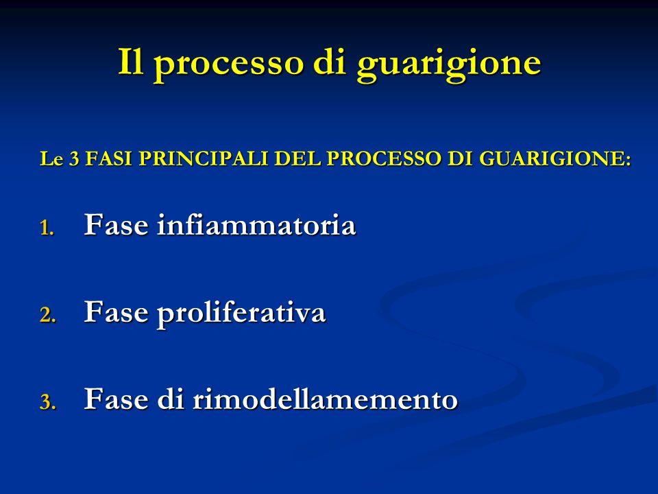 Il processo di guarigione