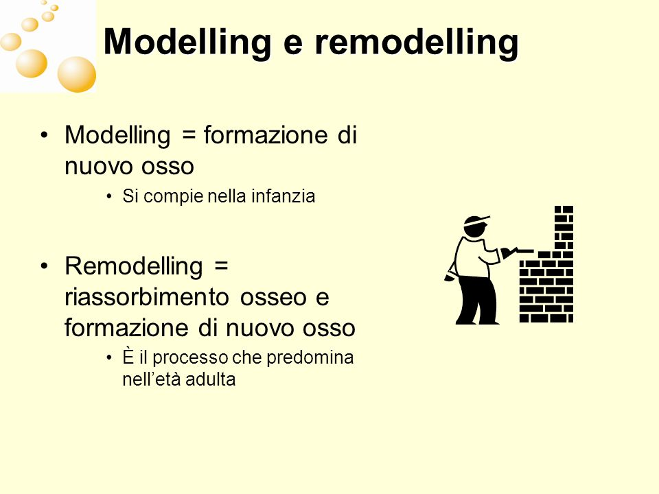 Modelling e remodelling
