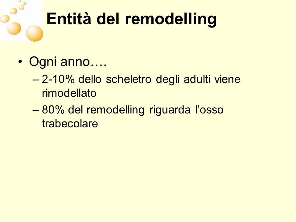 Entità del remodelling