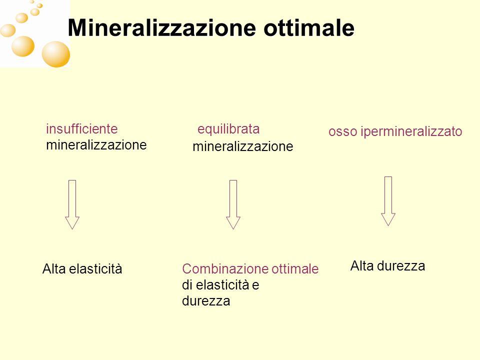 Mineralizzazione ottimale