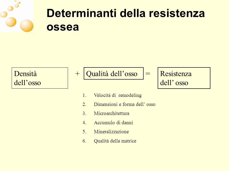 Determinanti della resistenza ossea