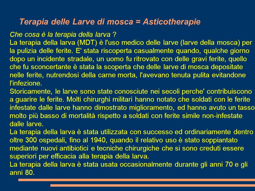 Terapia delle Larve di mosca = Asticotherapie