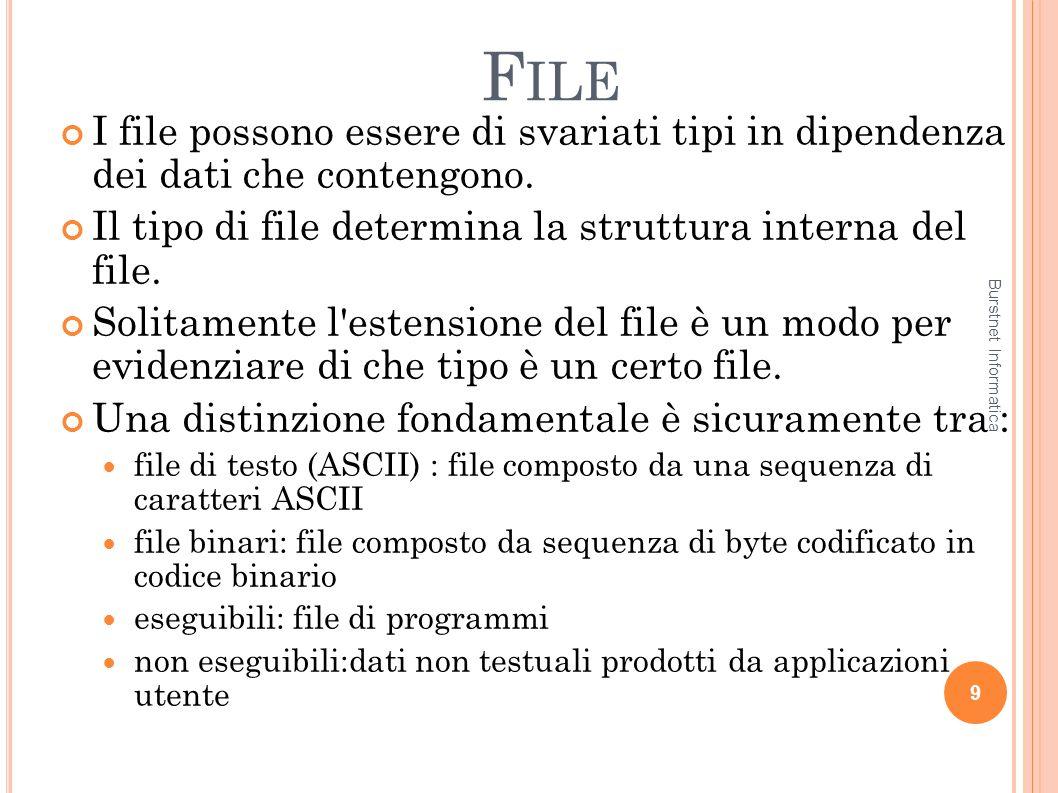 File I file possono essere di svariati tipi in dipendenza dei dati che contengono. Il tipo di file determina la struttura interna del file.