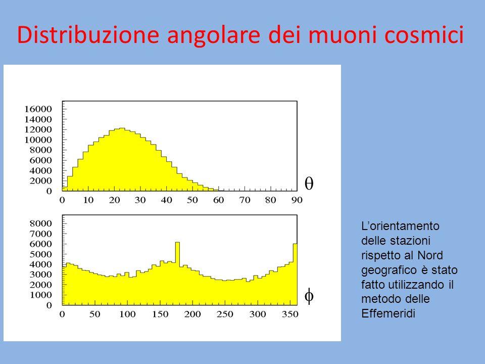 Distribuzione angolare dei muoni cosmici
