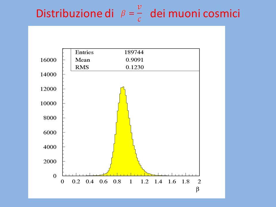 Distribuzione di dei muoni cosmici
