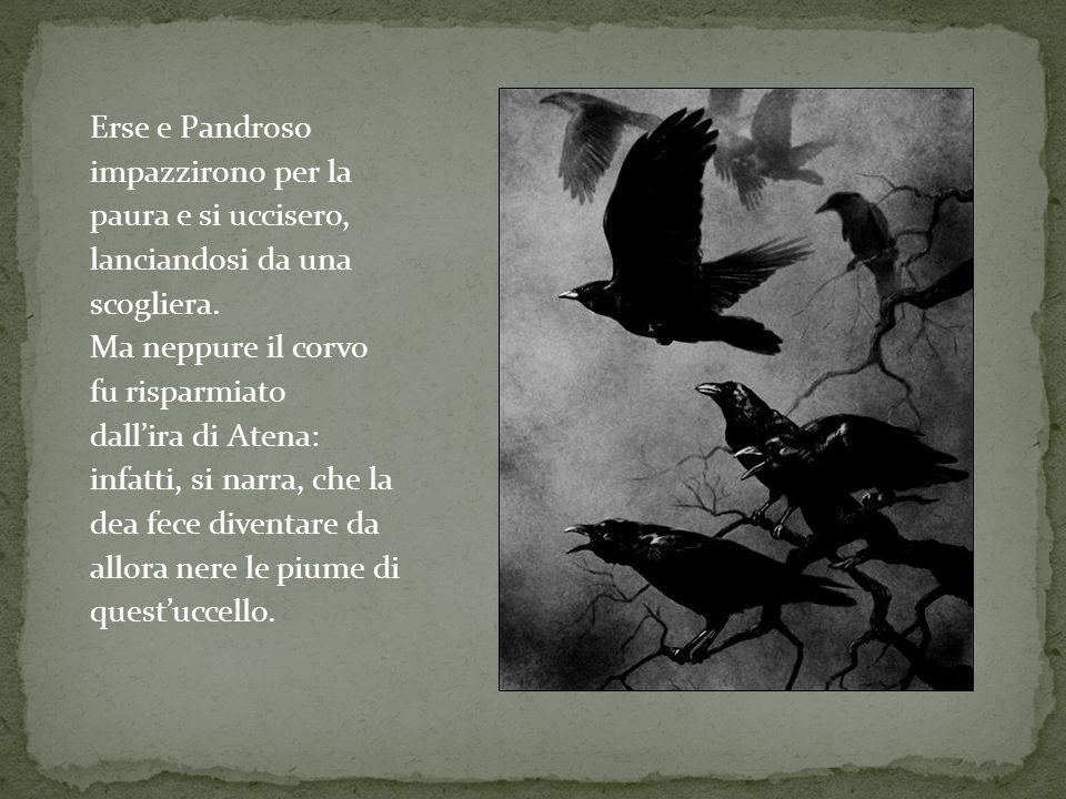 Erse e Pandroso impazzirono per la. paura e si uccisero, lanciandosi da una. scogliera. Ma neppure il corvo.