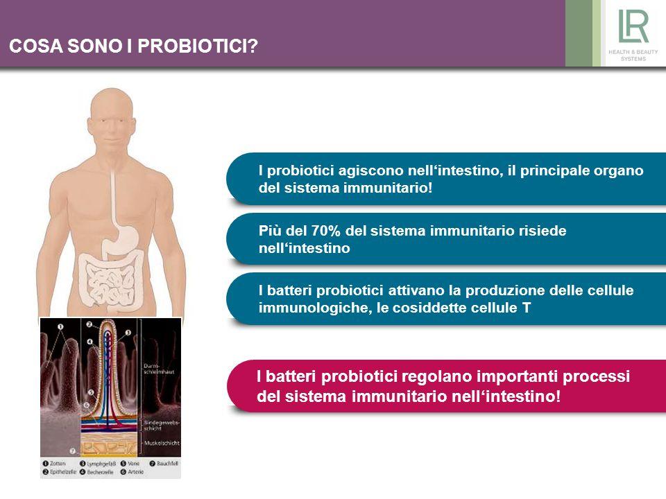 COSA SONO I PROBIOTICI I probiotici agiscono nell'intestino, il principale organo del sistema immunitario!