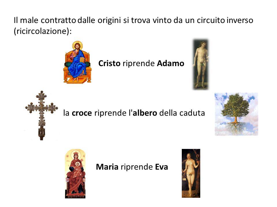 la croce riprende l albero della caduta